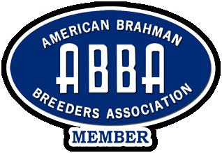 Swaner Brahmans - American Brahman Breeders Association Medmber ABBA